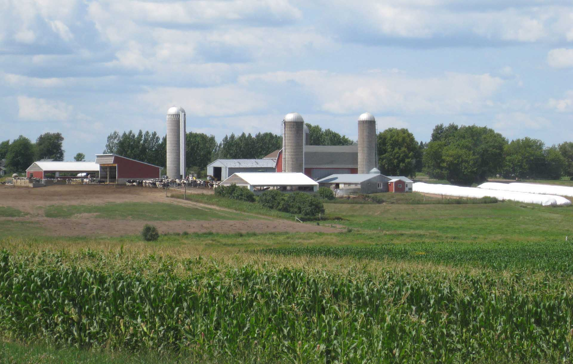 Brost Farms WS